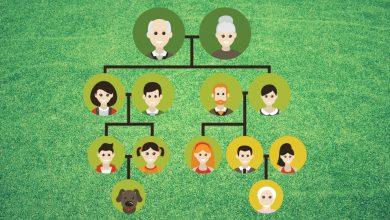من المشاكل الأسرية : النسب وأحكامه الشرعية